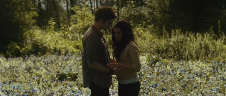The Twilight Saga Eclipse  Wikipedia