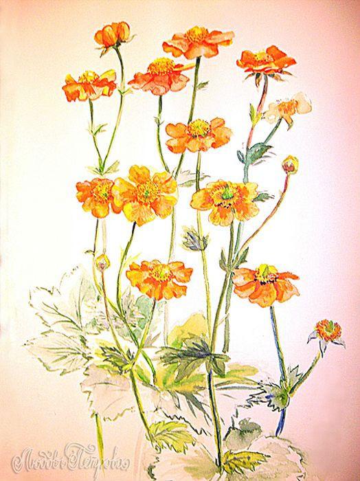 Ландыши заказать цветы купить Ландыши c доставкой букетов