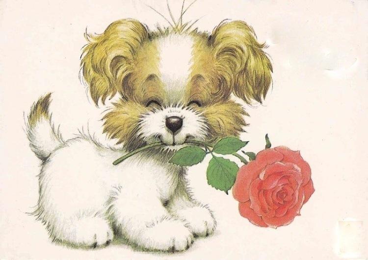 Картинки для рисованной открытки 682