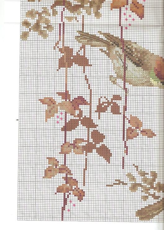 Райская птица вышивка 73